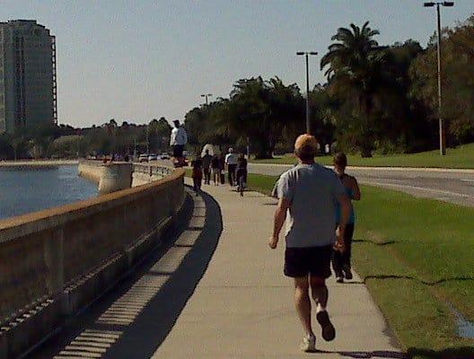 South Tampa Real Estate Report